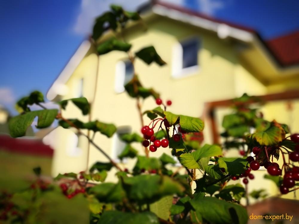 «Живу как у Христа за пазухой!». Александр Солодуха раскрыл секрет счастливой загородной жизни.