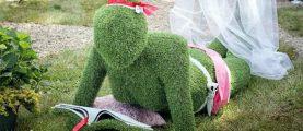 Планы на выходные: едем на фестиваль «Садовый переполох»!