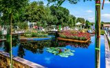 Лучшие садовые выставки 2015 года