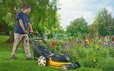 Чем косить газон: критерии выбора газонокосилки