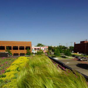 Зеленые кровли: Можно ли на крыше устроить газон?