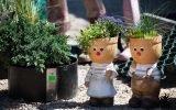 Замахнулись на «Челси». Кто победил в конкурсе «Садовый переполох» с лучшим дизайном сада