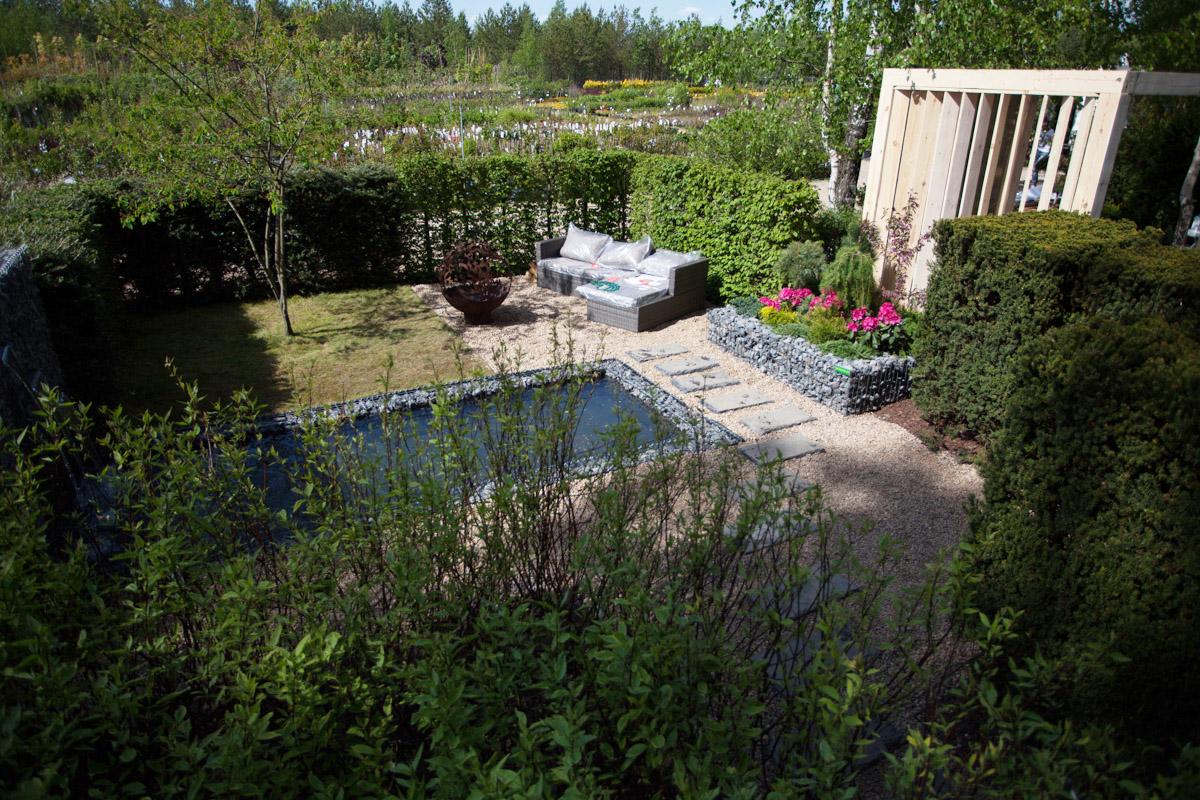 Как получить 2-метровую живую изгородь на участке за 1 день? Инструкция для всех