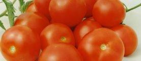 ТОП-3 детерминантных сортов томатов с фото