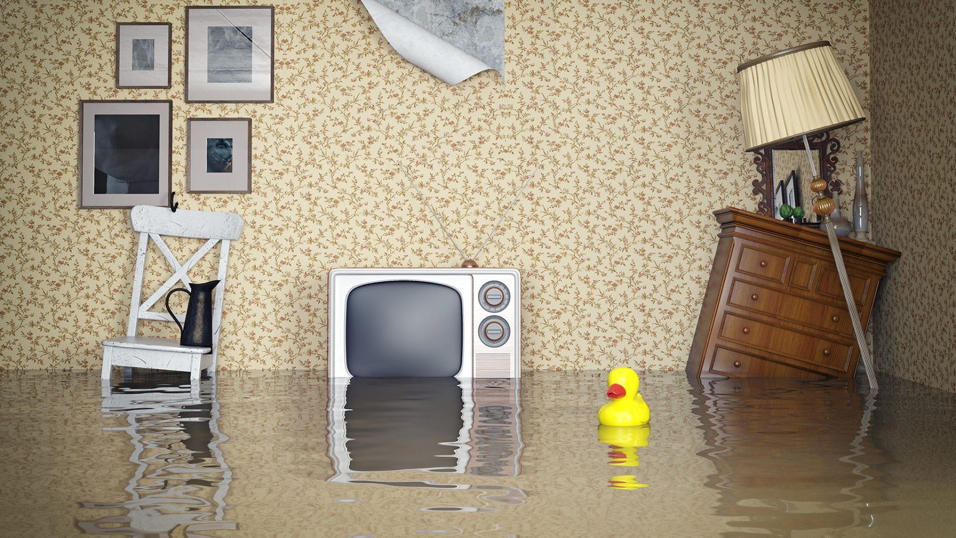 Затопили соседи: что делать