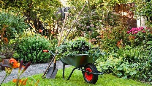 Красивый сад своими руками: советы по уходу