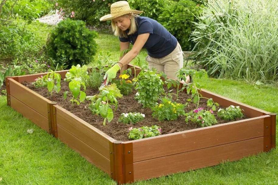 Как соорудить высокие грядки для огорода
