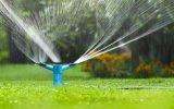 Как сэкономить время на поливе: подключение и сборка простых самодельных систем полива