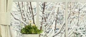 Уход за окнами зимой
