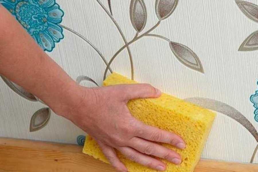 Моющиеся обои: какие выбрать для отделки стен кухни